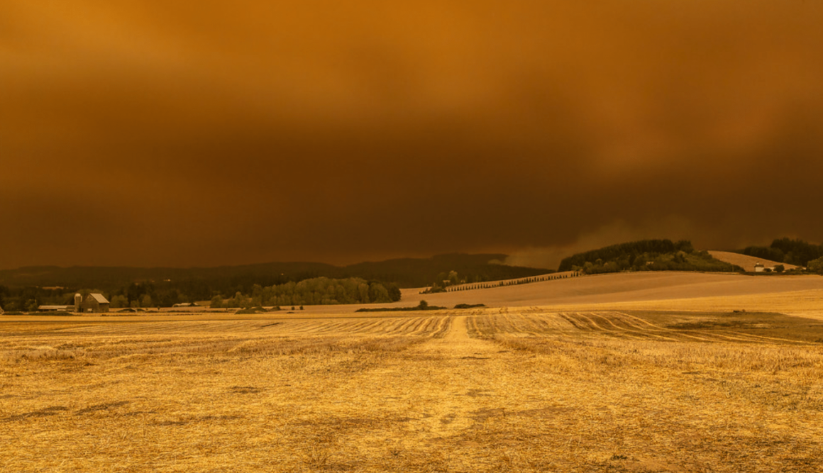 US Wildfire Victims Forced To Crowdfund To Rebuild Their Lives